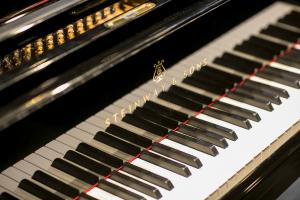 Klawisze fortepianu.